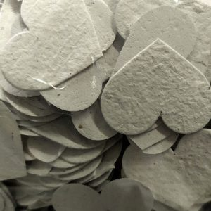 Biodegradable Seed Paper Confetti