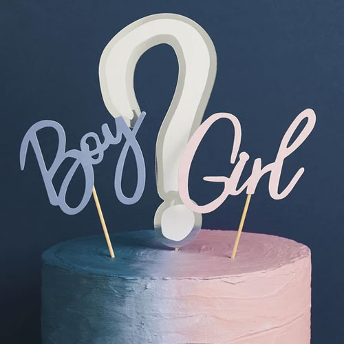 Gender Reveal Cake Topper Set
