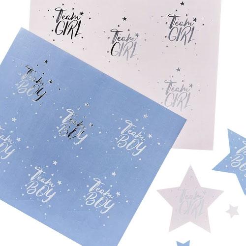 Gender Reveal Stickers