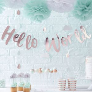 Hello World Backdrop Banner