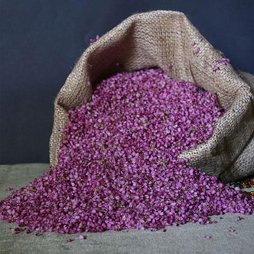 Erica fynbos confetti